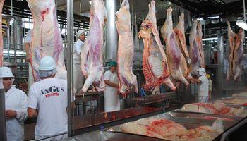 El noreste patagónico potencia su ganadería y busca definir un plan de competitividad