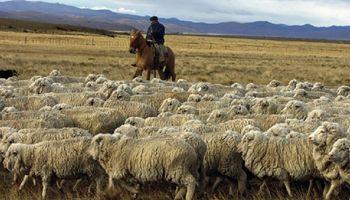 """La carne ovina tiene su nomenclador de cortes y aseguran que es la """"base para exportar"""""""