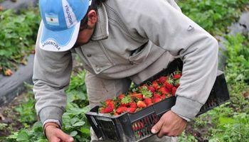 Bajó un 4,5% la participación del productor en el precio de los productos agropecuarios