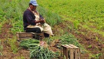 Agricultura familiar: una ley que busca potenciar valores culturales y ancestrales