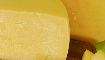 Buscan métodos para acelerar la maduración de quesos a través de enzimas