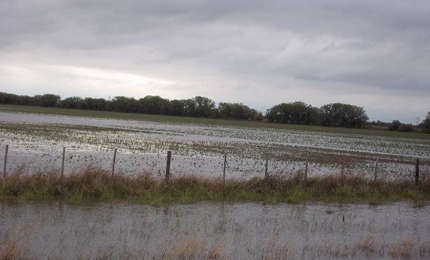 Buscan evitar nuevas inundaciones.