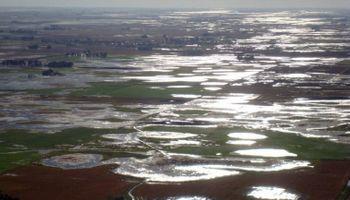 Córdoba ya perdió un millón de toneladas de soja por inundaciones