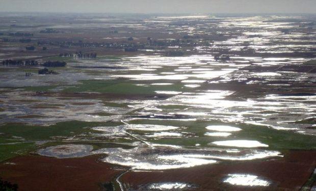 Néstor Roulet cree que de las 15,5 o 15 millones de toneladas de soja estimadas para esta cosecha en Córdoba habrá un millón menos.