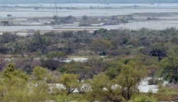 Intensas lluvias anegaron 12 millones de hectáreas
