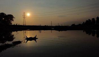 """""""Se cayó el cielo"""": las fuertes imágenes de las inundaciones en las granjas de China"""