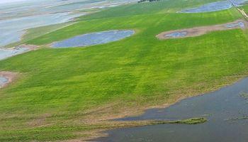 Córdoba: más de 200 mil hectáreas en emergencia por excesos hídricos