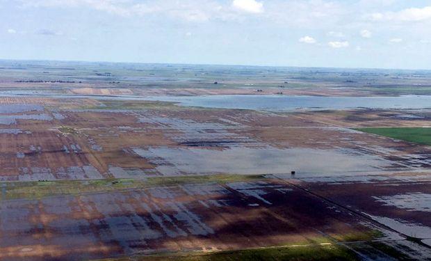 Inundaciones: Agroindustria admite la pérdida de un millón de hectáreas, pero espera una cosecha récord.