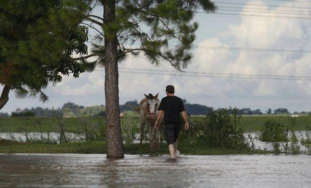 Las inundaciones deterioran la producción en Santa Fe. Foto: Archivo / Emiliano Lasalvia / Enviado especial.