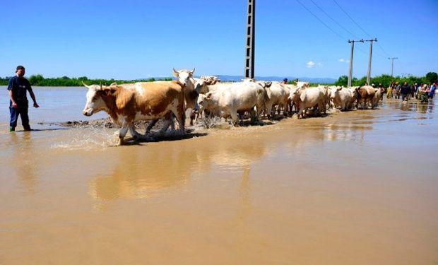 Asistencia a productores afectados por las inundaciones.