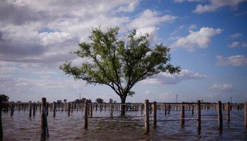General Villegas: el drama de la inundación va del campo a la ciudad