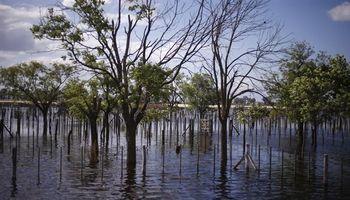 Buenos Aires: usarán sensores para alertar por inundaciones