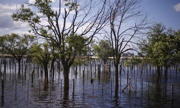 Quieren alertar por las emergencias en inundaciones.