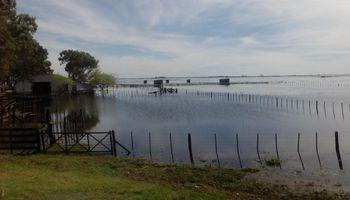 """Scioli: """"Tenemos prácticamente la mitad de la provincia inundada"""""""