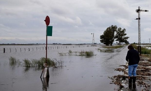 El agua avanza en los campos de General Villegas. Foto: Diego Lima
