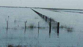 1.000 trabajadores rurales afectados por las inundaciones en Córdoba