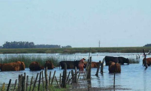 La producción santafesina está en situación de crisis profunda en todas sus actividades.