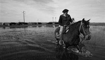 Bajo el agua, en Dolores se quejan por la falta de obras