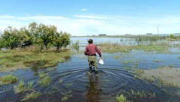 Inundaciones: ¿Qué hacer ante una situación de emergencia agropecuaria?