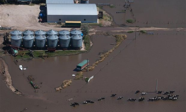 Un tambo en cercanías de Marcos Juárez, Córdoba, cercado por el agua.Foto: La Nación/Diego Lima.