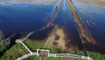 Se mantiene una gran cantidad de hectáreas bajo el agua