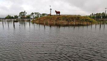 En una web, productores inundados difundirán lo que necesitan para no perder su campo