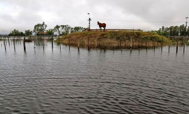 Villegas sufre inundaciones desde hace 15 meses.