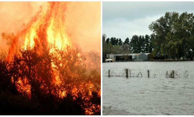 La peligrosidad de incendios en el norte de la Patagonia, La Pampa y sur de Buenos Aires se estima alta en las próximas 72 horas.
