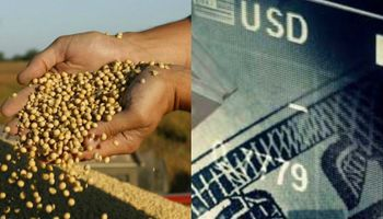 Inversiones poscosecha: ¿peso o dólar?