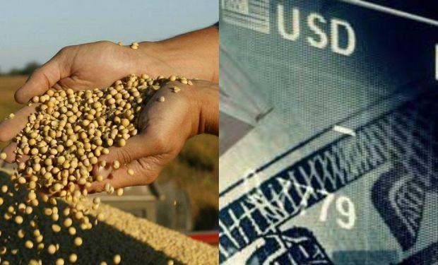 Una vez finalizada la cosecha, la preocupación que urge tanto a los grandes como medianos y pequeños productores es dónde y cómo invertir su capital.
