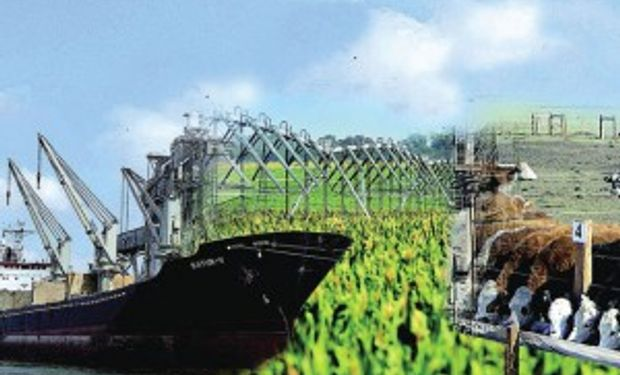 China destina u$s1.500 millones para proyectos de agroindustria