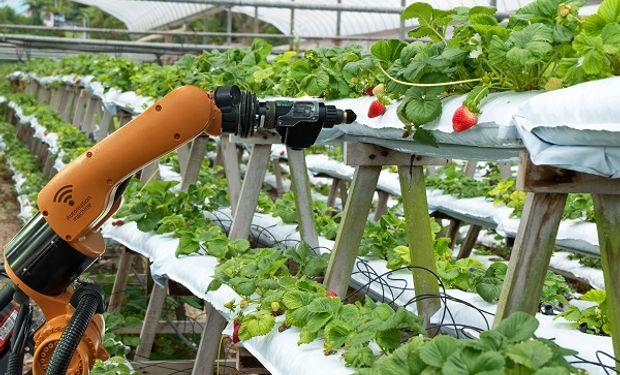 Un estudio de The World Government Summit estima que en 2020 se aplicarán 75 millones de dispositivos IoT a la agricultura a nivel mundial.