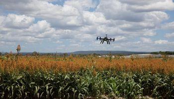 Internet de las cosas: un abanico de oportunidades para el agro