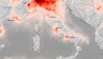 El COVID-19 demostraría que la ganadería no tiene la culpa del calentamiento global