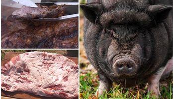 Carne exótica: cocinaron un jabachancho y se sorprendieron con el resultado