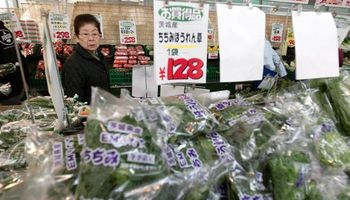 Japón es todavía un mercado para desarrollar y agregar valor