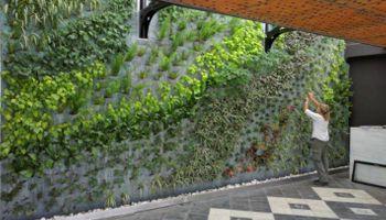 Espacios verdes suspendidos en el aire, una tendencia que crece
