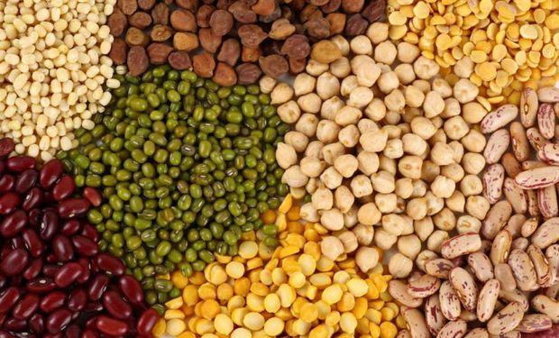 """""""Hoy el productor de legumbres está recibiendo un precio ridículamente bajo"""", sentenció Poletti."""