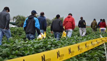 Un encuentro a pura soja en Tucumán