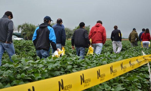 Un grupo de productores se dio cita el martes 29 de abril en el Campo Experimental La Cruz.