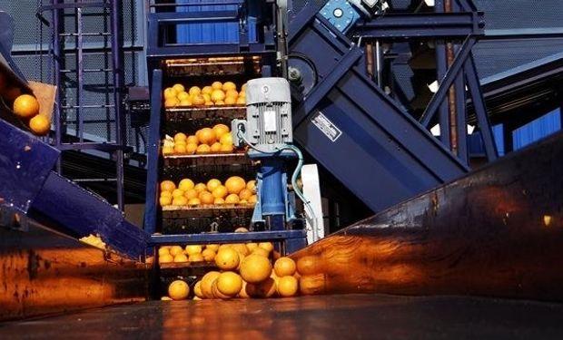 Fábrica de jugos ya exporta a Sudáfrica y Dinamarca,