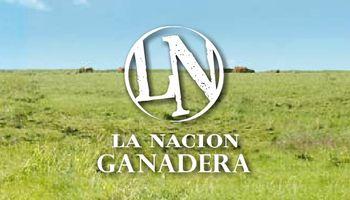 Quedó oficialmente inagurada La Nación Ganadera Norte