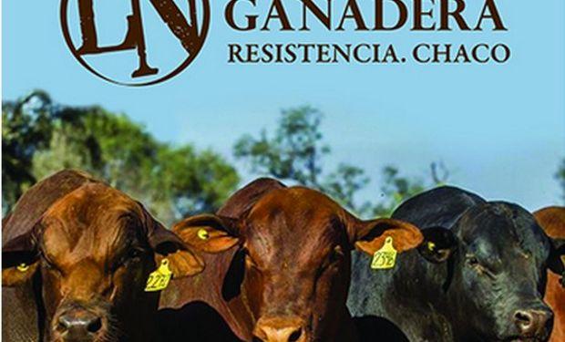 La Nación Ganadera Norte se llevó a cabo en Resistencia del 9 al 12 de junio.