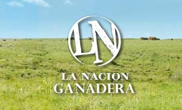 Se palpita una nueva edición de La Nación Ganadera Norte