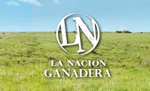 Mañana se realiza la apertura oficial de La Nación Ganadera Norte