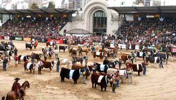 Comienza hoy la 131° edición de la Exposición Rural