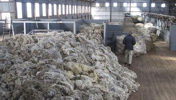 Preocupa a la industria lanera la exportación de lana sin procesar