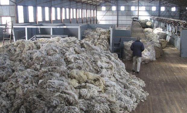 La exportación de lana sin procesar pone en riesgo la industria local.