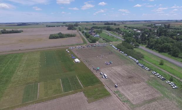 Habrá oportunidad de conocer un adelanto de ensayos de herbicidas, con alternativas para barbechos y pre-siembra en maíz.