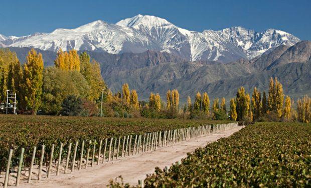 Vinos, legumbres, frutos secos, pasas de uvas, uvas de mesa, son solo algunos de los productos alcanzados por el acuerdo.